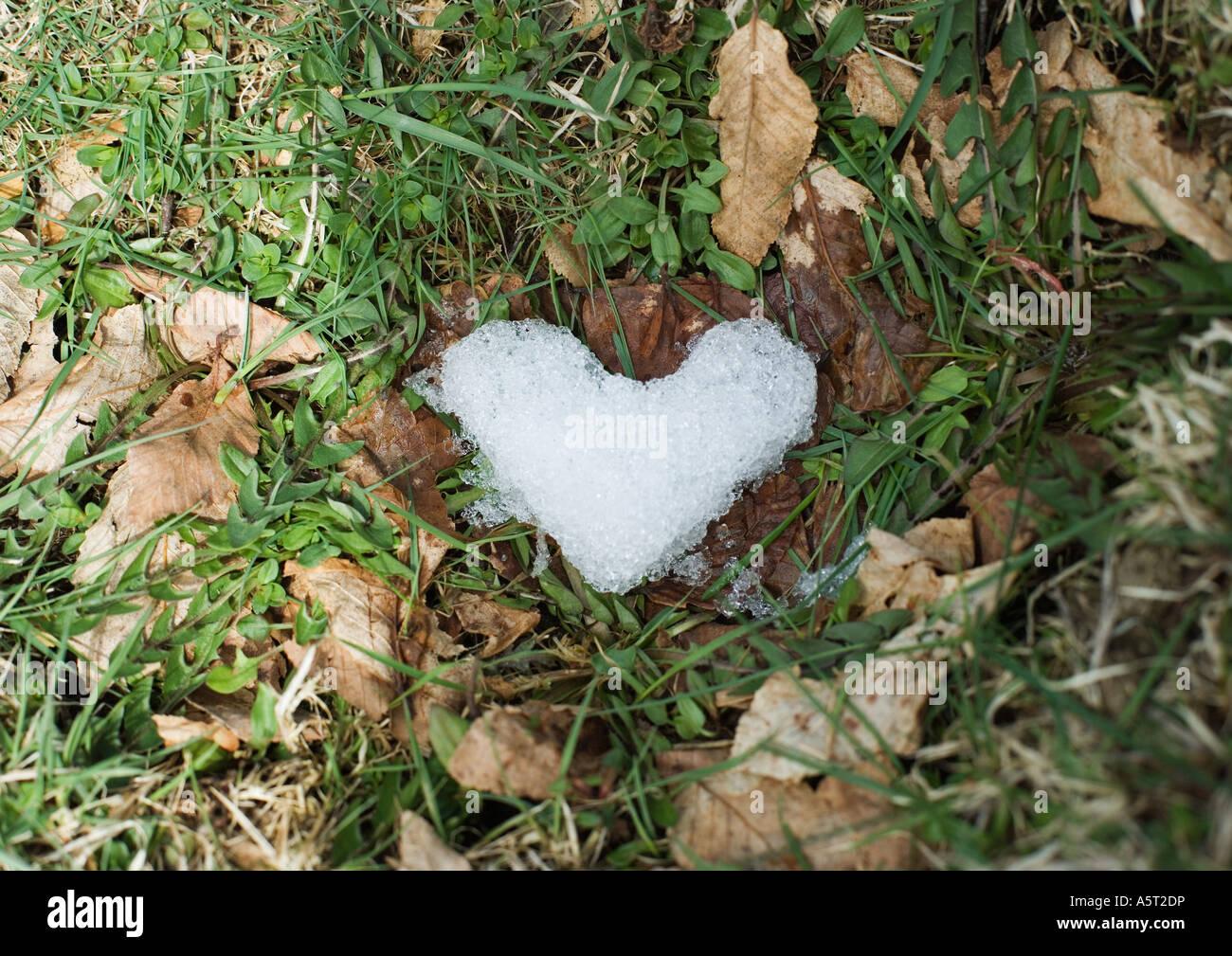 Hielo en forma de corazón en la hierba Foto de stock