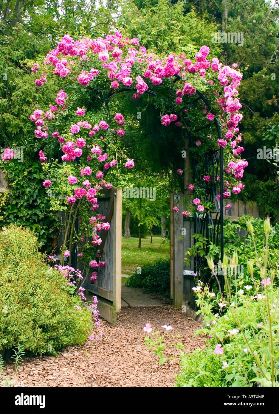 Lujoso Escalada Jardín Marco Componente - Ideas de Arte Enmarcado ...