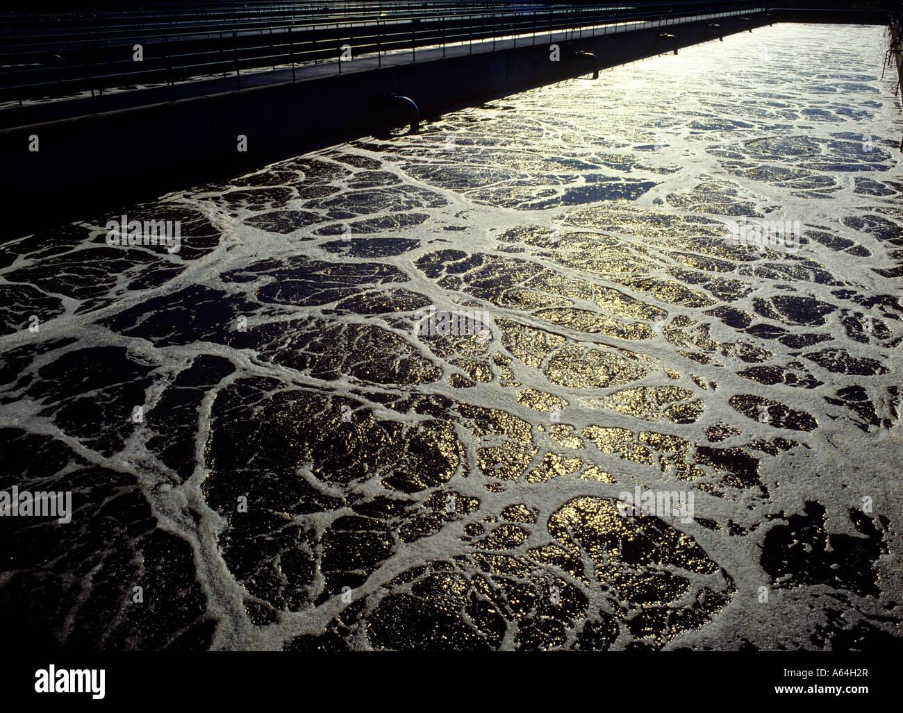 Tanque de aireación secundaria lodo activado en el tratamiento de aguas residuales y la planta de purificación Foto de stock
