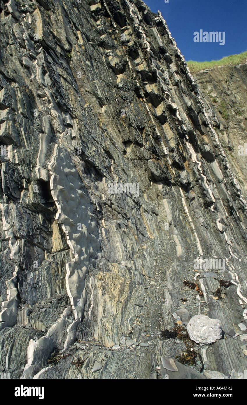 Famoso punto de referencia global para la geología, Green Point, en el Parque Nacional Gros Morne, Terranova Imagen De Stock
