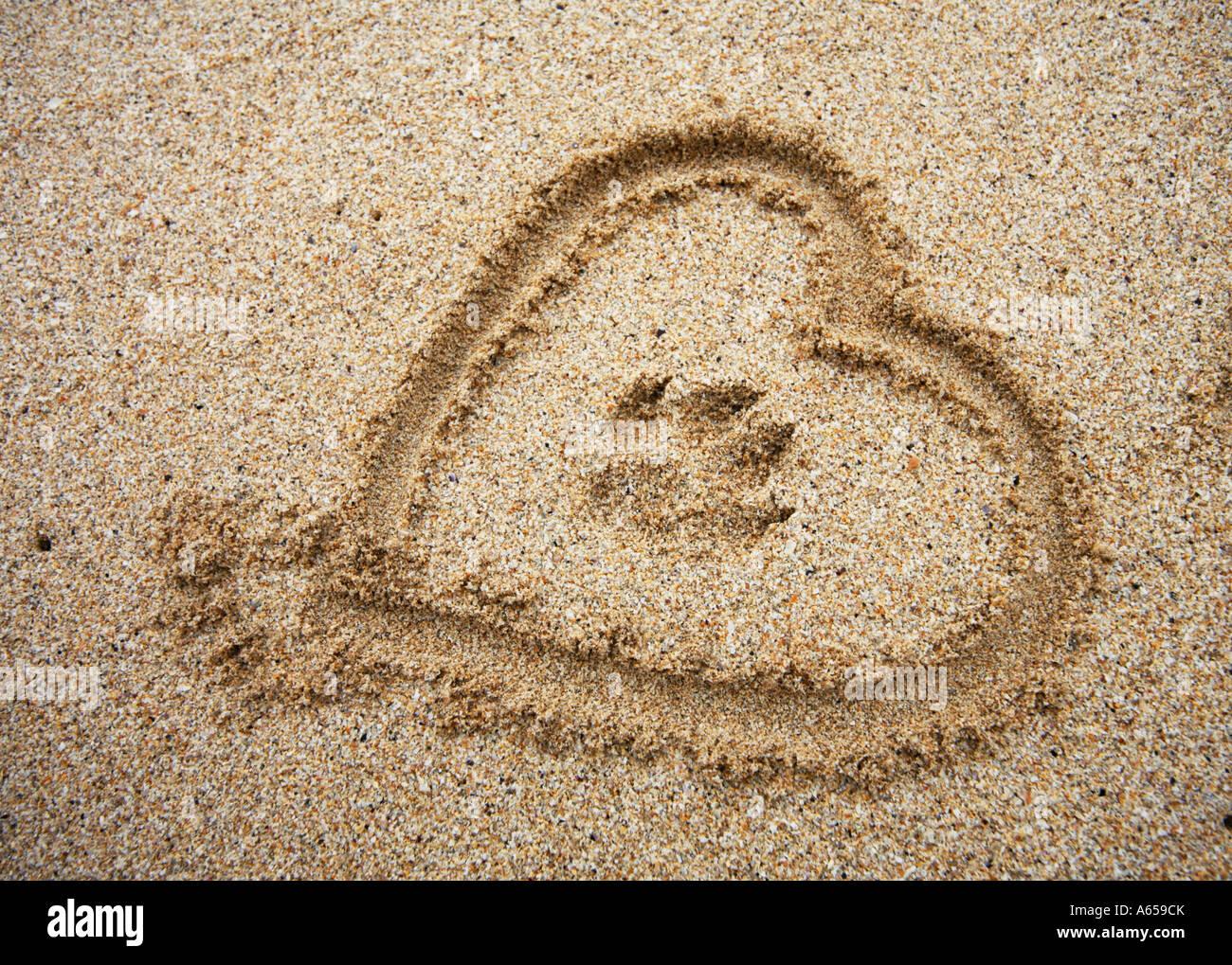 Pata de perro imprimir con el corazón en la arena Imagen De Stock