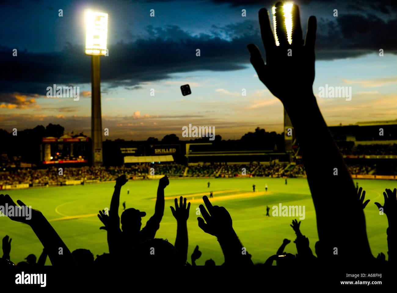 Fans haciendo onda Mexicana por la noche partido de cricket, Perth, Australia Occidental Imagen De Stock