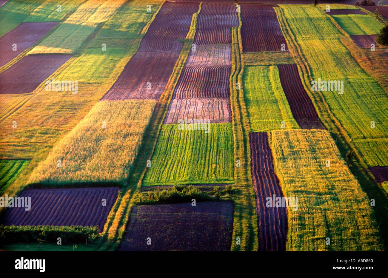 Granja orgánica del sudeste de Polonia Foto de stock