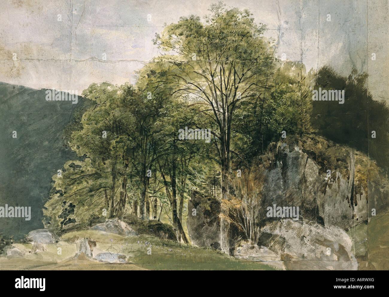 Las bellas artes, el romanticismo, la pintura, el hayedo en las faldas alpinas, acuarela por Kaiser, del siglo xix, Foto de stock