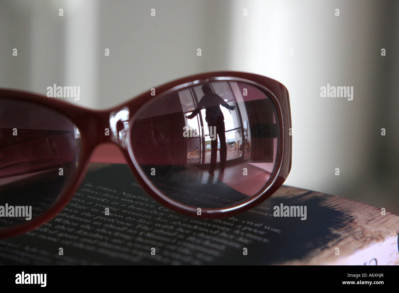 Reflejo en gafas de sol Imagen De Stock