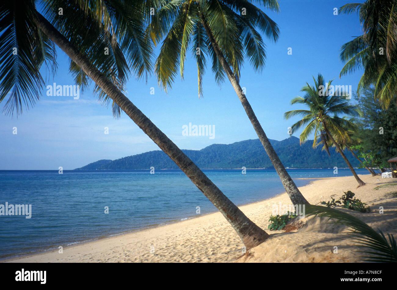 En el Berjaya Beach Resort en la isla de Tioman Malasia Foto de stock