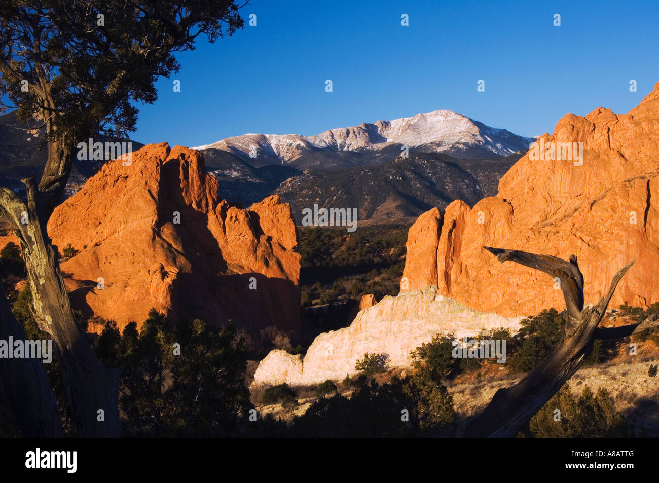 Moderno Enmarcando Colorado Springs Componente - Ideas ...