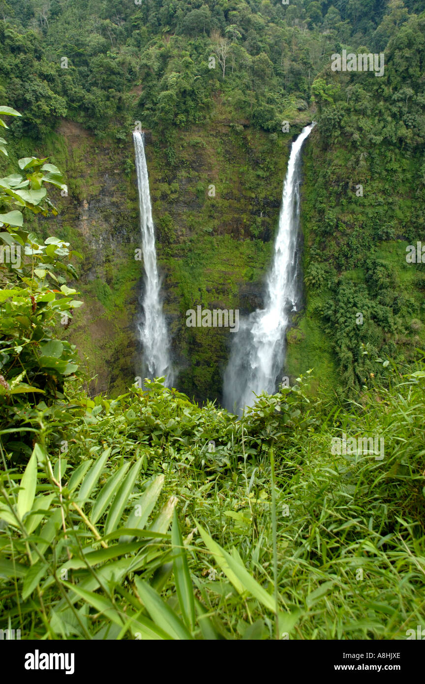 Tad Fane cascada Bolaven Plateau cerca Pakse Laos Foto de stock