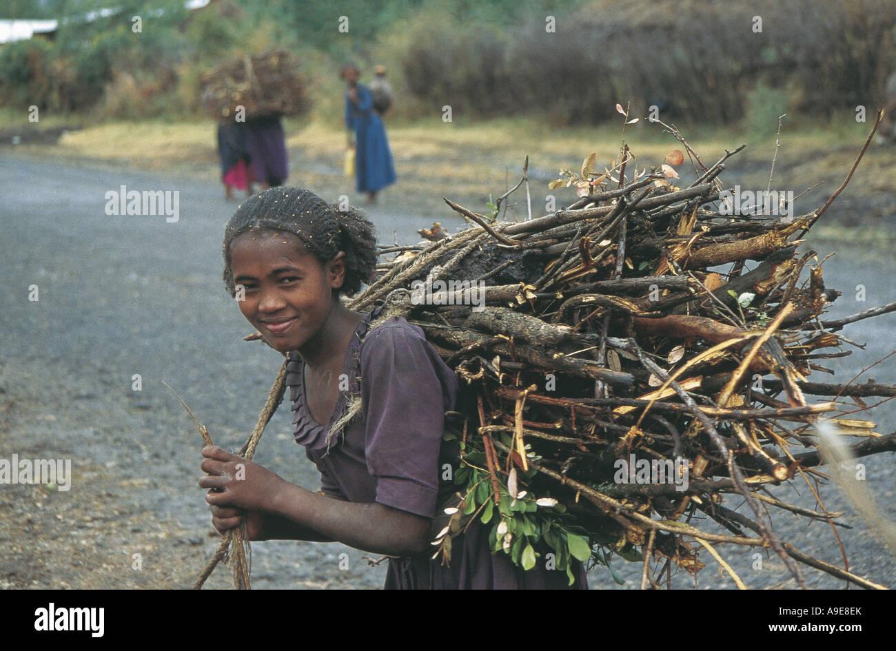 Mujer joven lleva el enorme paquete de madera en su espalda Etiopía Imagen De Stock