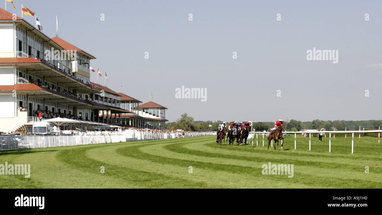 Hipódromo y carrera de caballos Imagen De Stock