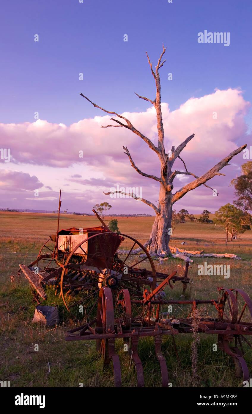 La vieja maquinaria y arado delante del árbol muerto en una granja Foto de stock