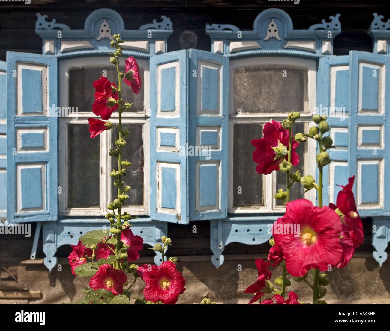 Flores de verano en frente de hermosas ventanas con marcos ...
