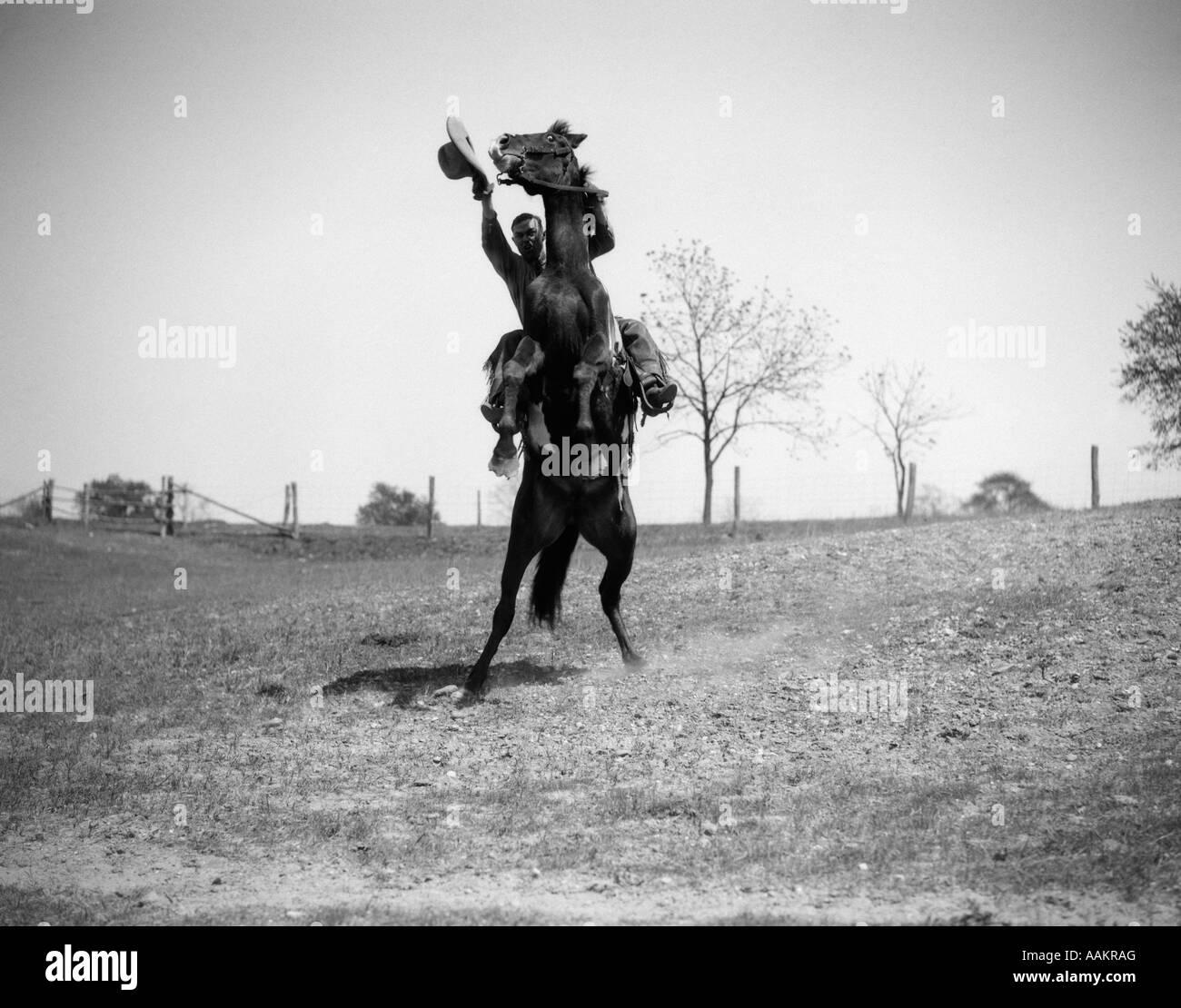 1920 1930 vaquero en su caballo LEVANTÁNDOSE HOMBRE agitando el sombrero en la mano Foto de stock