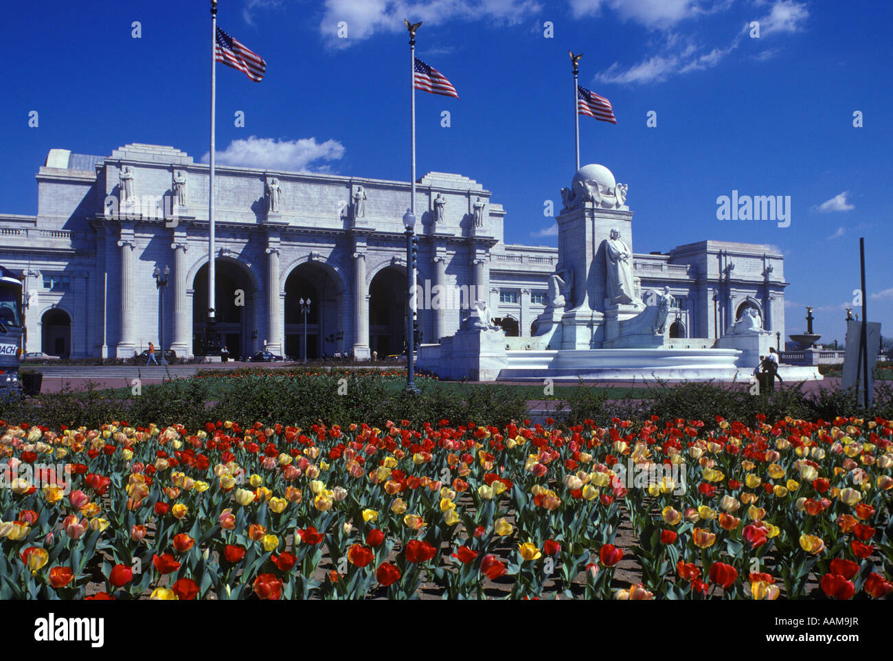 UNION STATION EN PRIMAVERA Tulipanes en Washington DC en primer plano Imagen De Stock