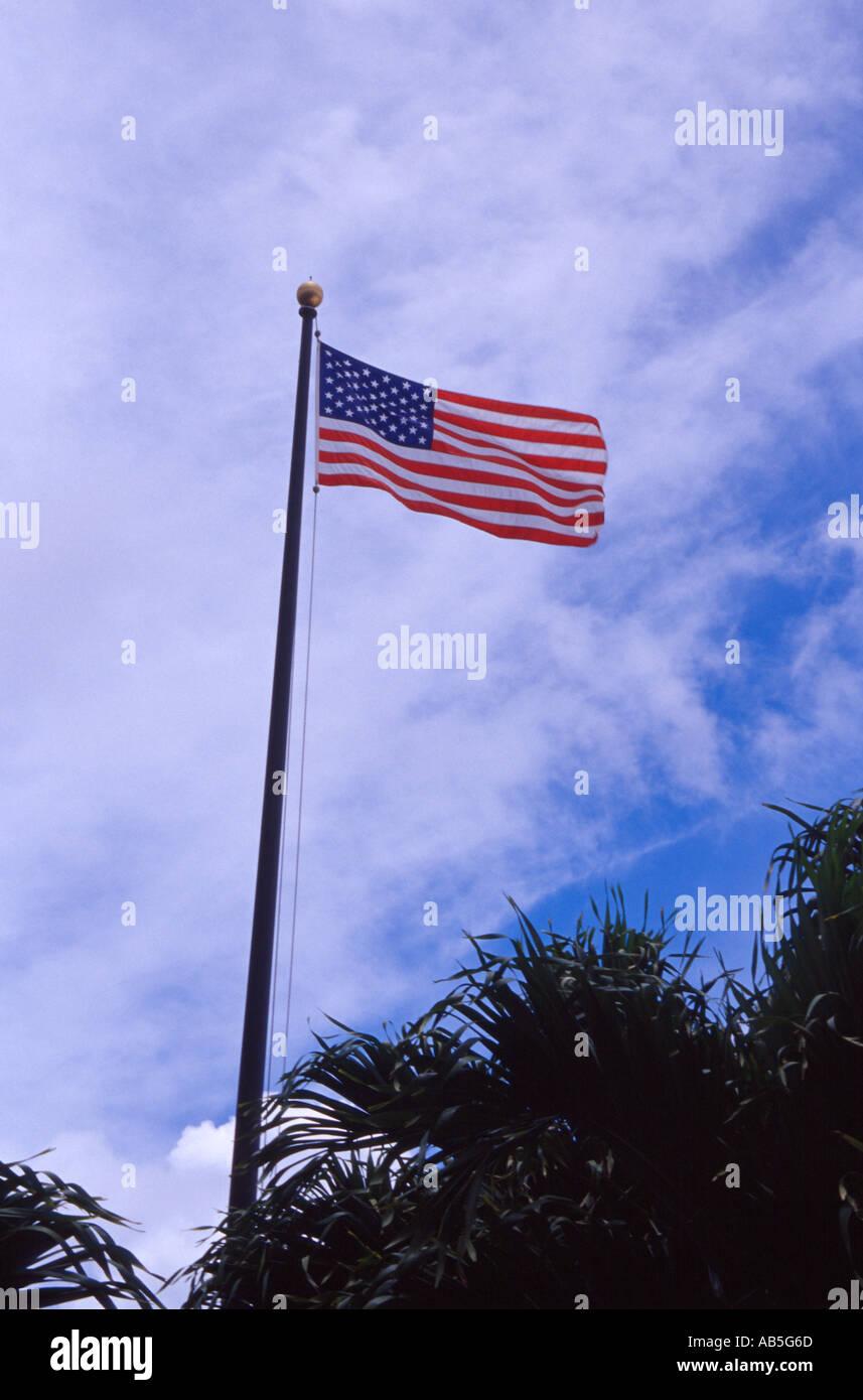 Vistoso Colorear Bandera De Estado De Montana Ilustración ...