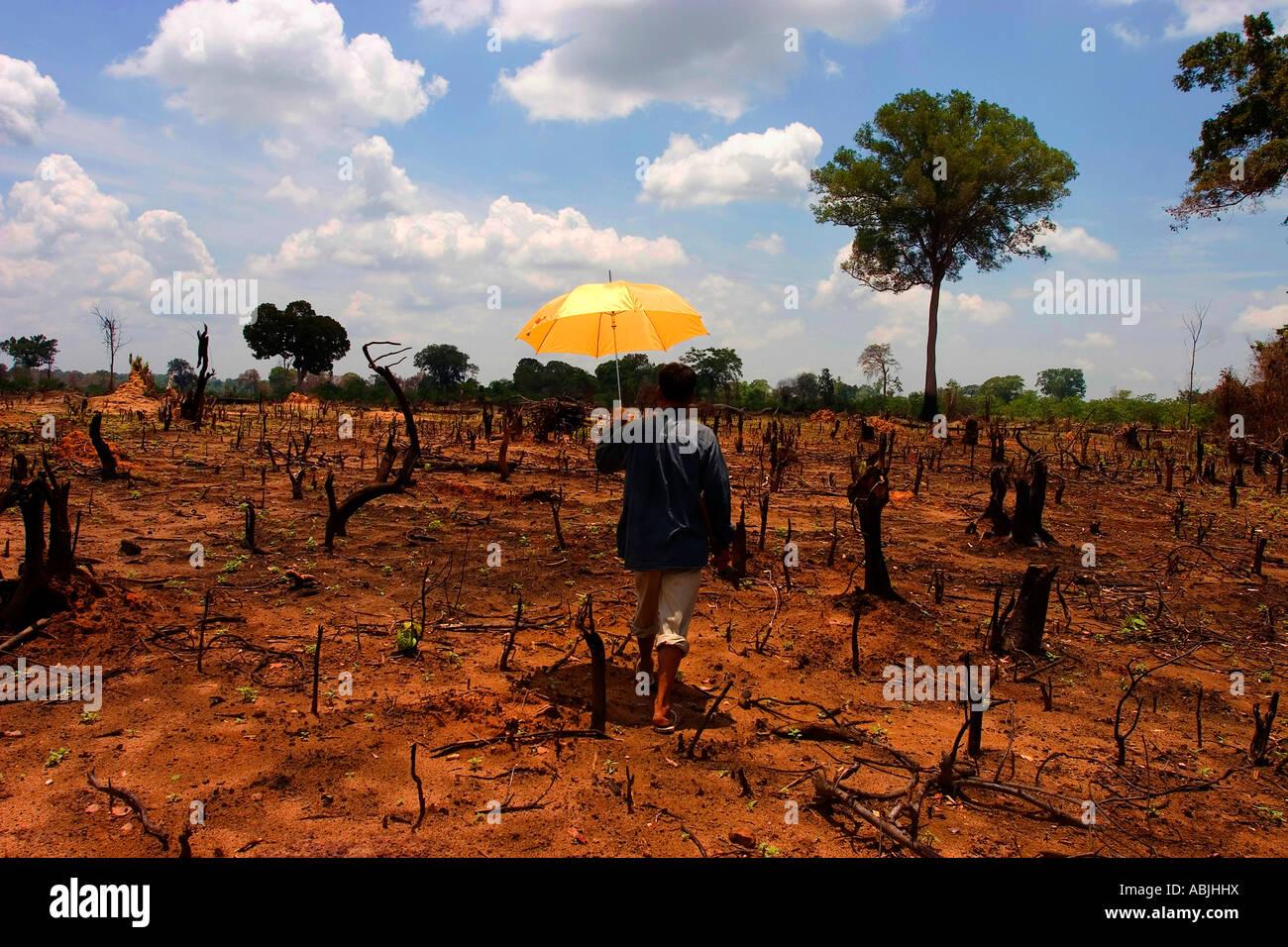Laos sufre una serie de problemas ambientales, el más importante de los cuales están relacionados con Imagen De Stock