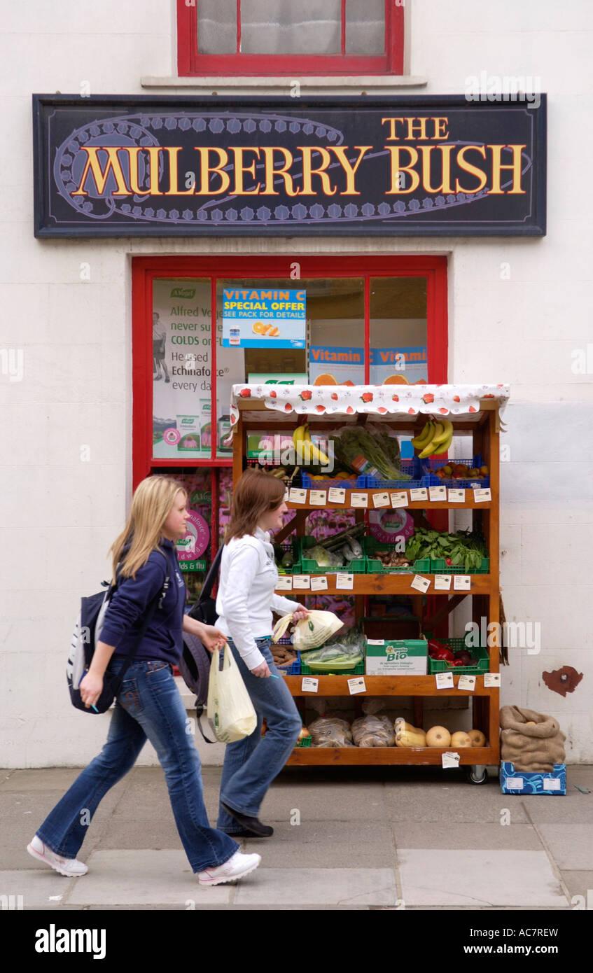 El Mulberry Bush tienda de comida naturista Lampeter Ceredigion Gales  Occidental UK Imagen De Stock 1849a017d1df