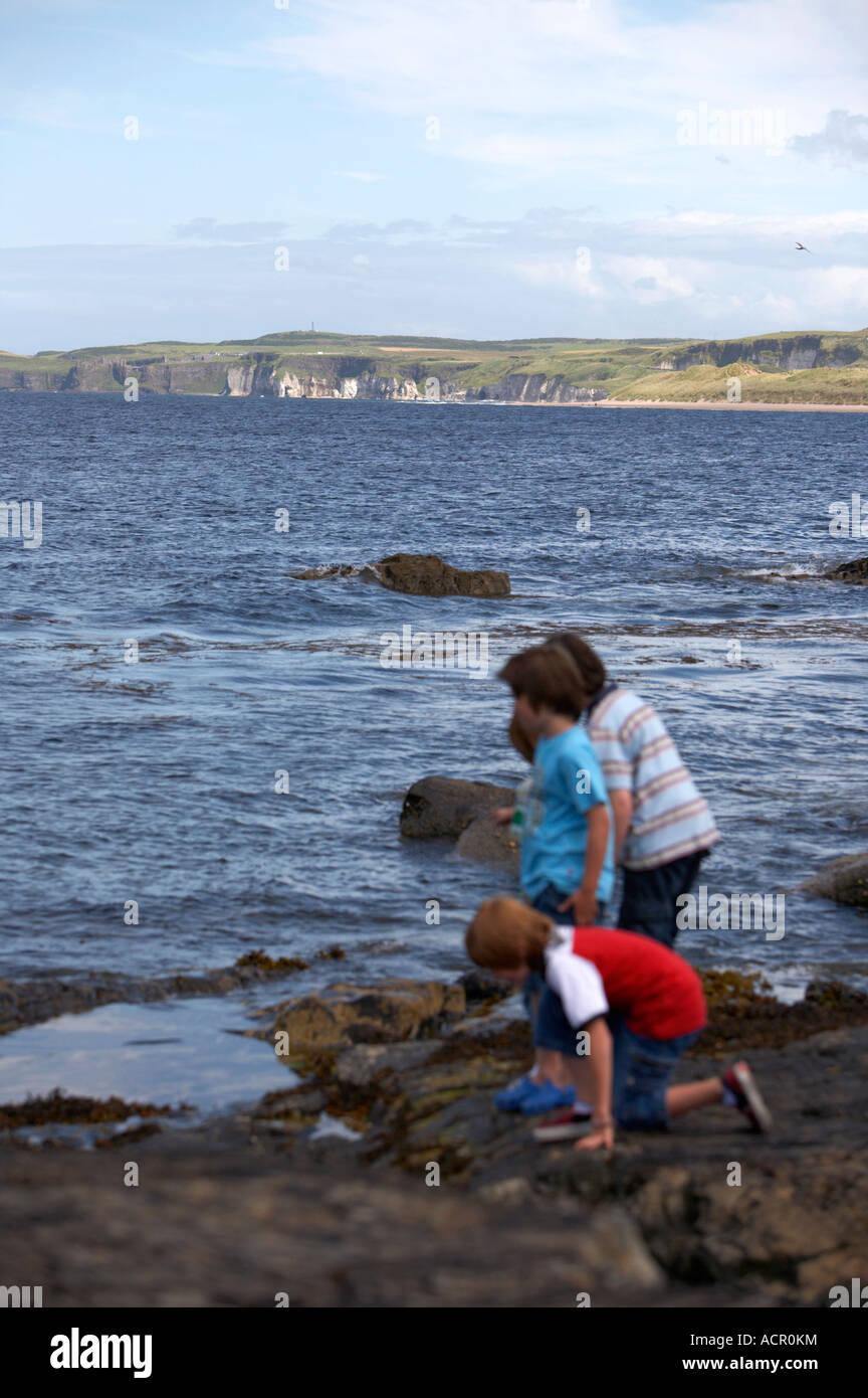 Un grupo de cuatro muchachos jóvenes que buscan en un estanque de rocas en la costa rockly en Portrush vertical Imagen De Stock