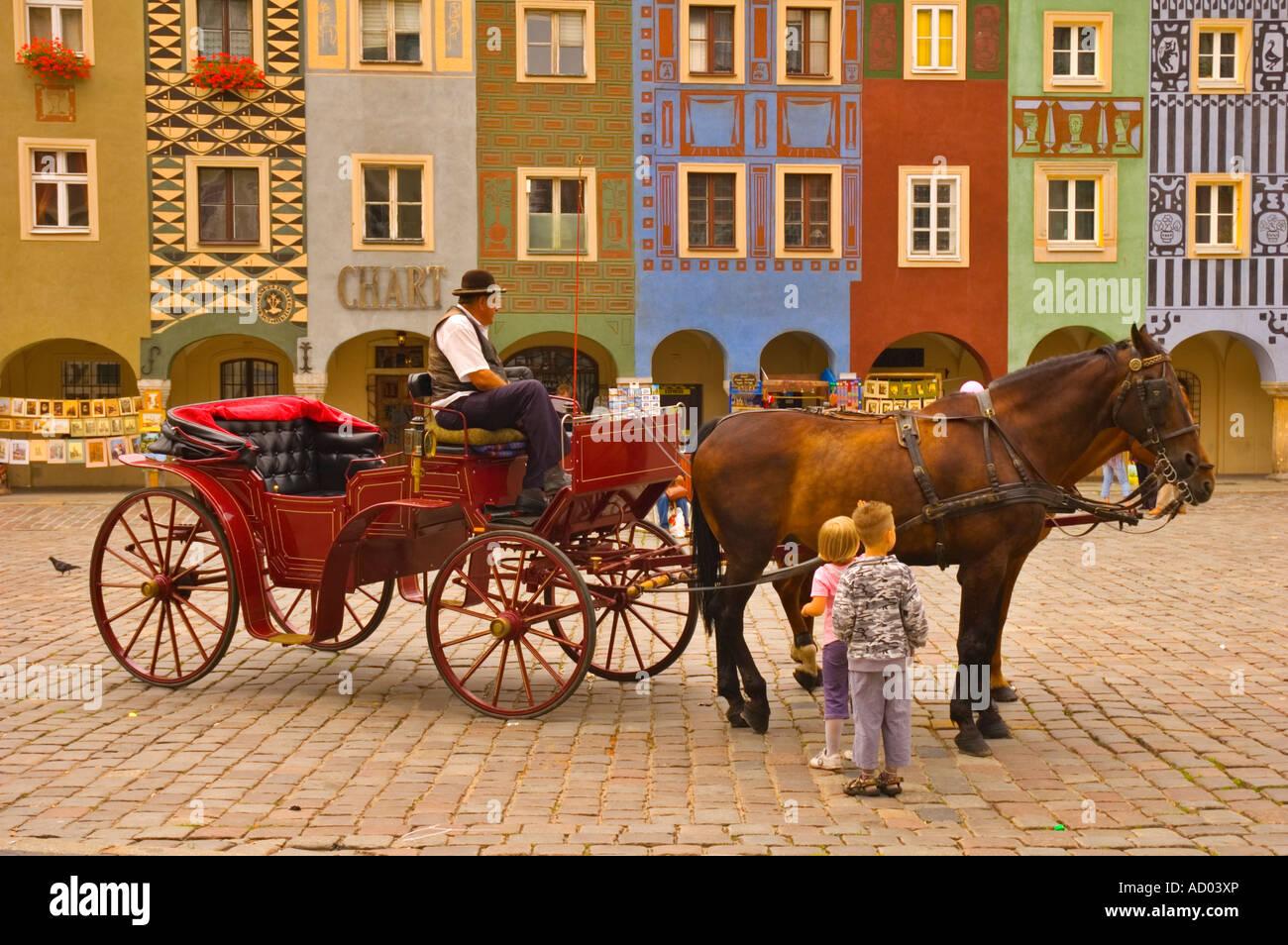 Caballos en la Plaza de la Ciudad Vieja, en el centro de Poznan, Polonia UE Imagen De Stock
