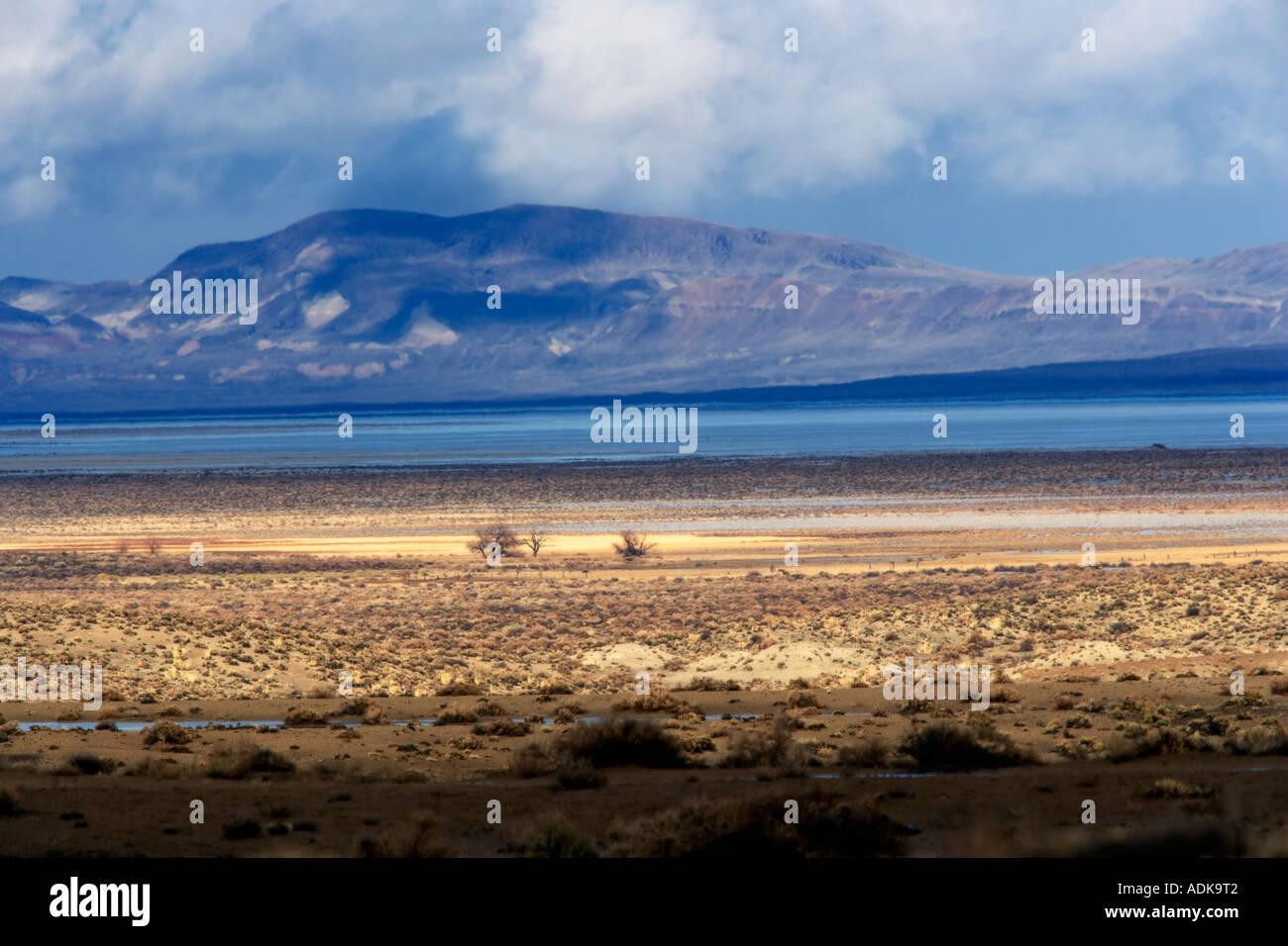 Los árboles solitarios y Tormenta del Desierto Black Rock de Nevada Área Nacional de Conservación Foto de stock