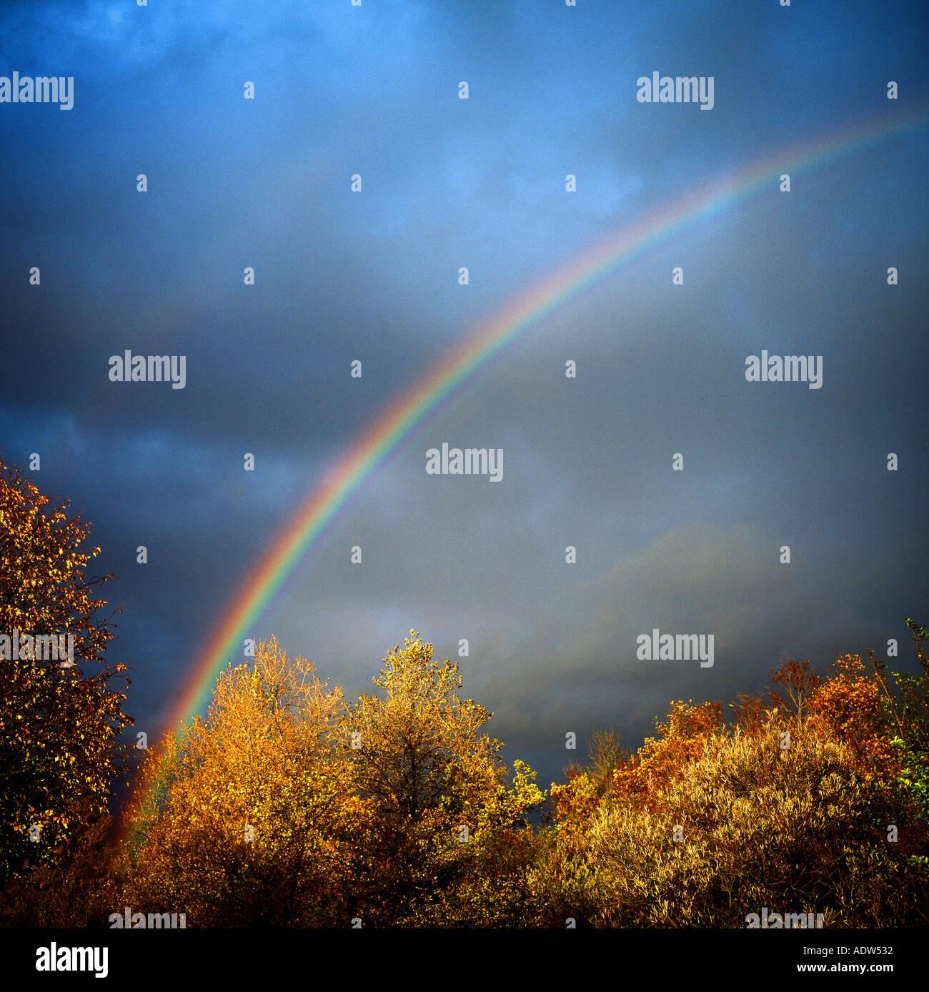 Arco iris con follajes de árboles otoñales y cielo tormentoso EUROPA ALEMANIA Imagen De Stock