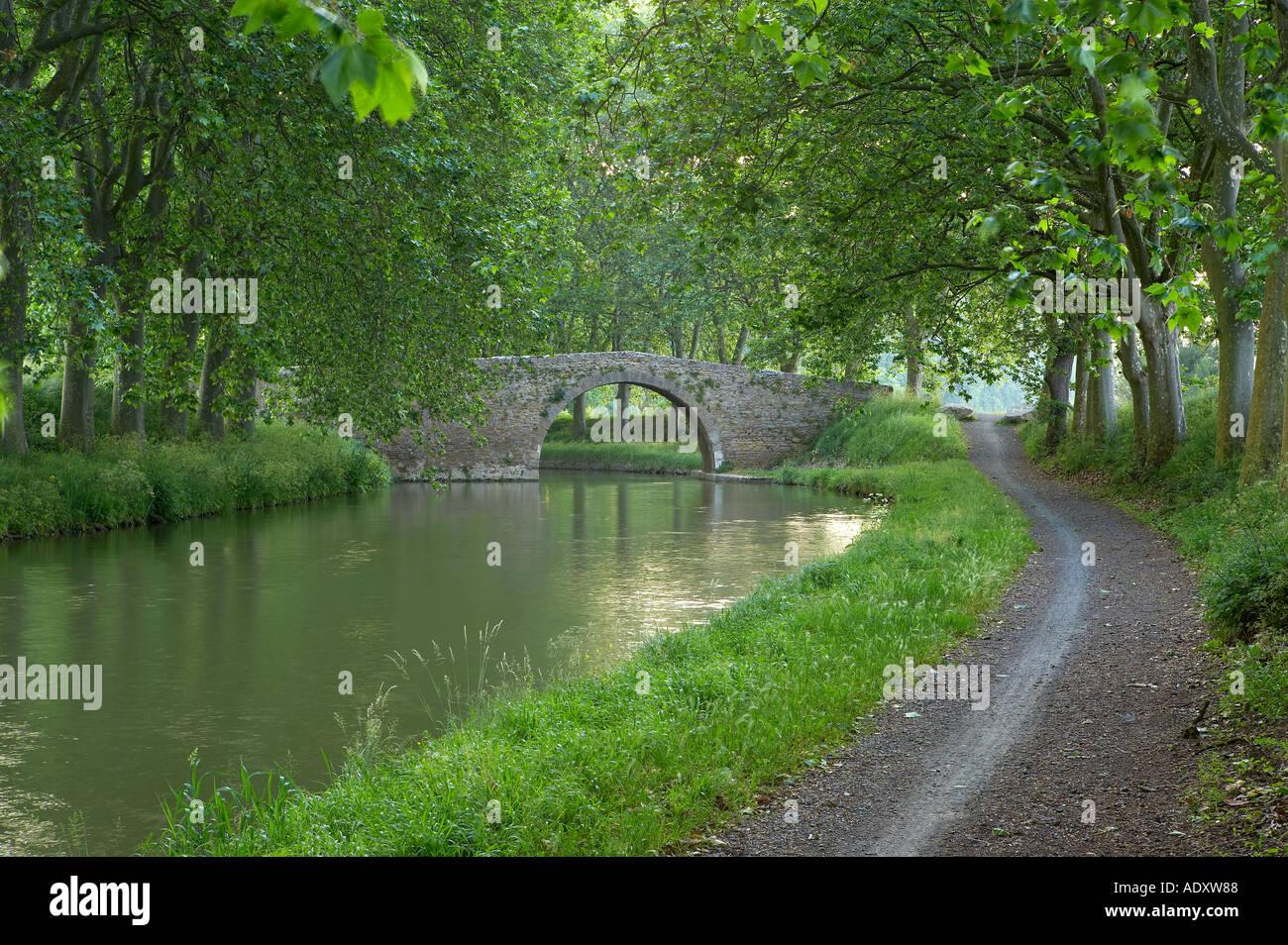 Ruta del remolque en el Canal du Midi nr Carcassonne Languedoc Francia Foto de stock
