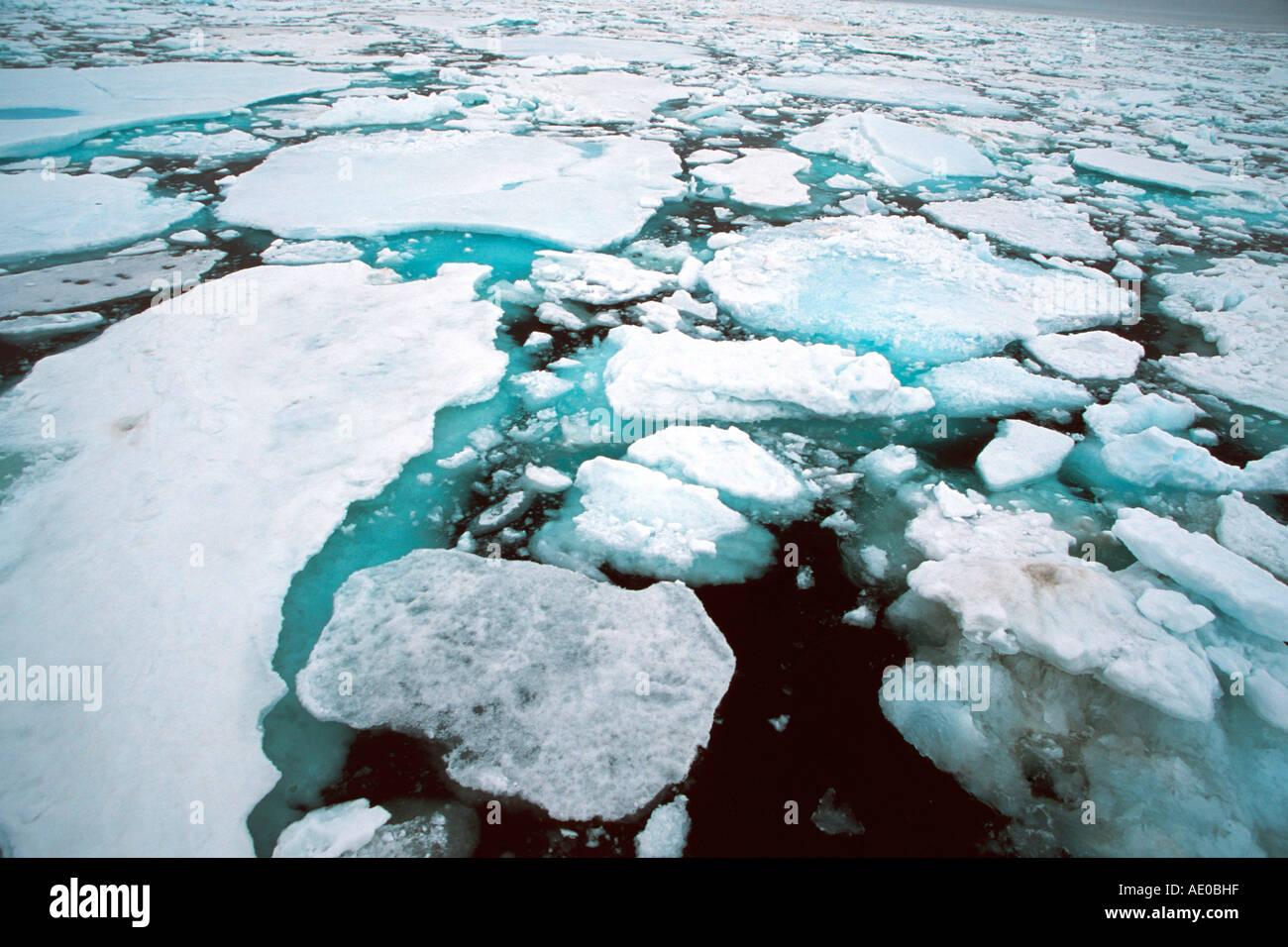 Paquete de hielo a la deriva de los campos de hielo hielo actic ocean Treibeis Packeis Eisfeld Arktis Ozean Svalbard Foto de stock
