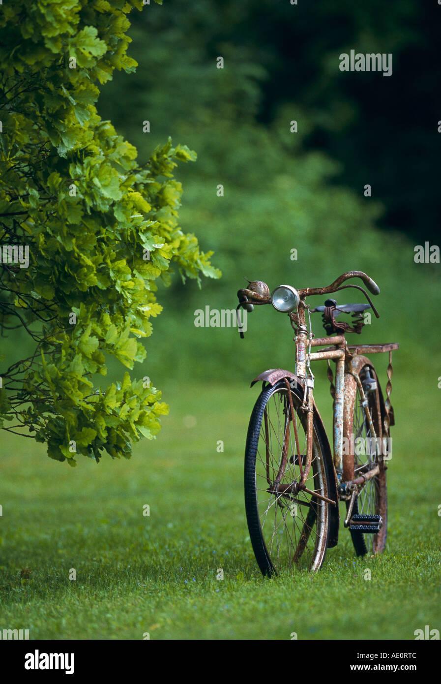 Imagen del viejo ensueño BICLETAS Imagen De Stock