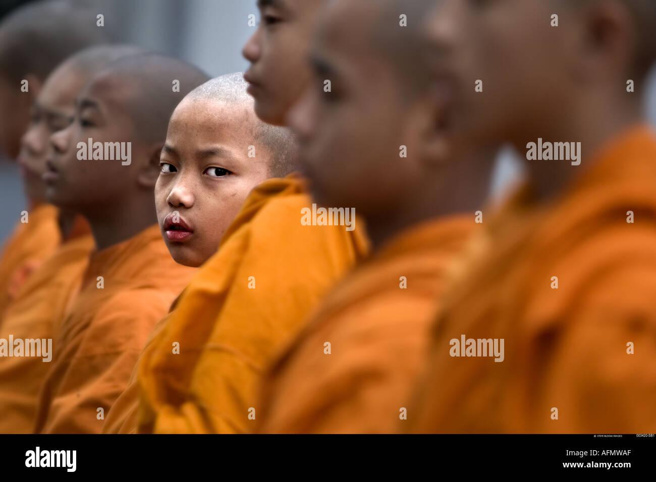 Los jóvenes monjes budistas en el templo budista de la sociedad Mahabodhi el Templo del Buddha Sarnath India Imagen De Stock