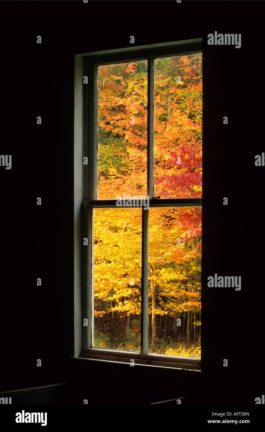 Colores de otoño a través de la ventana Foto de stock