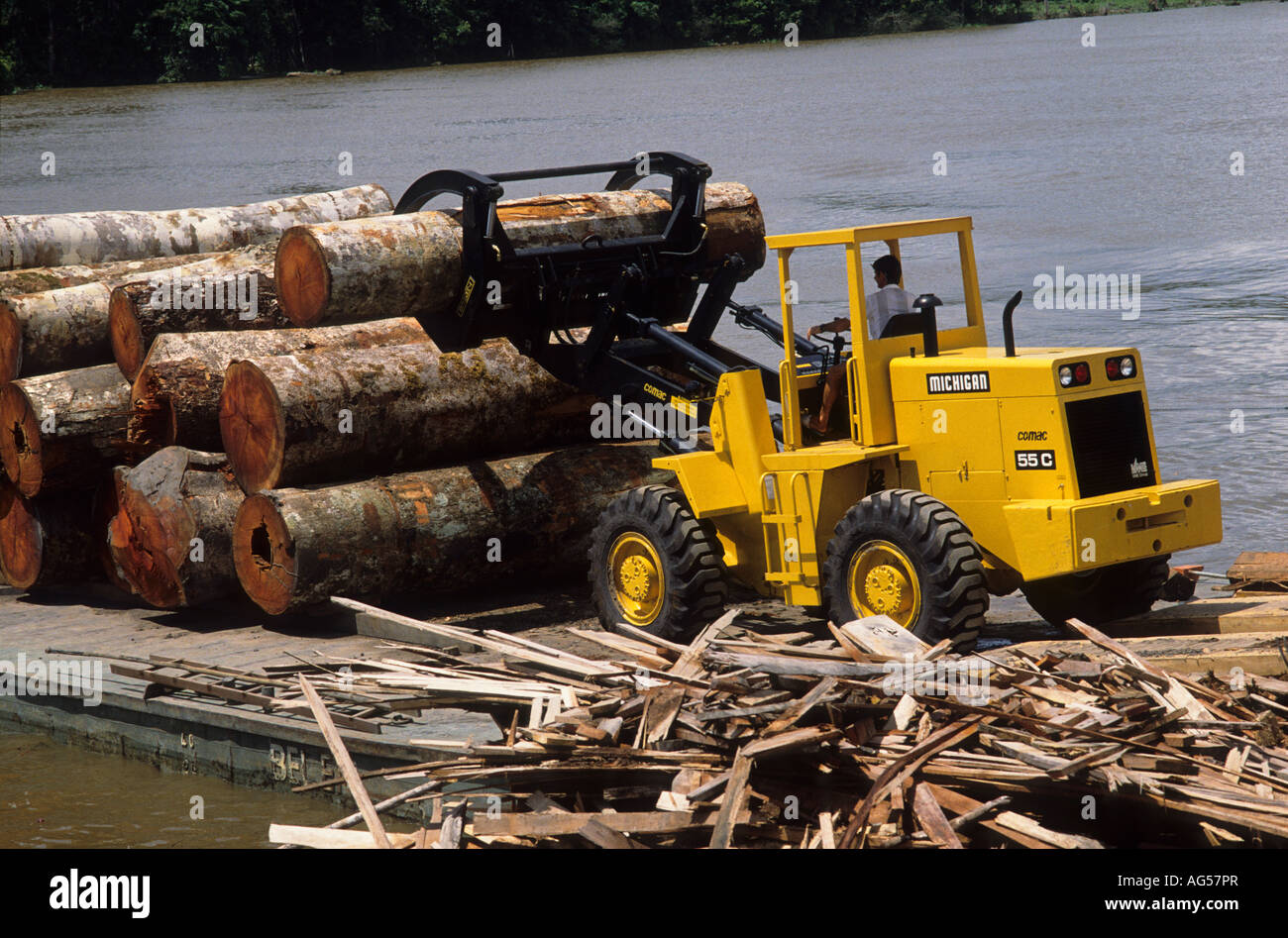 Deforestación: descarga de cargadora de troncos rollizos de barcaza en el aserradero, estuario amazónico, Imagen De Stock