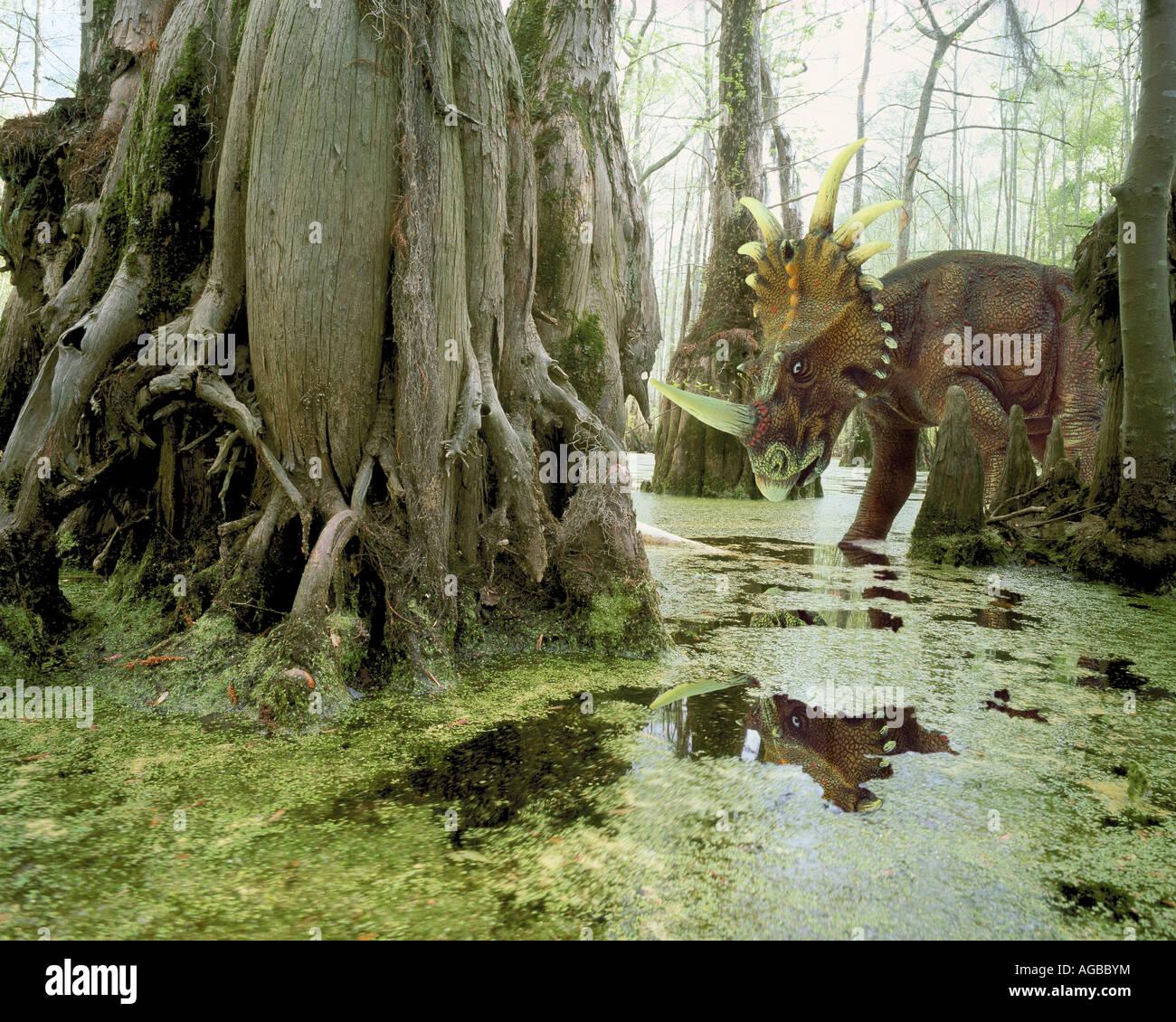 Styrachosaurus dinosaurio en pantano Foto de stock