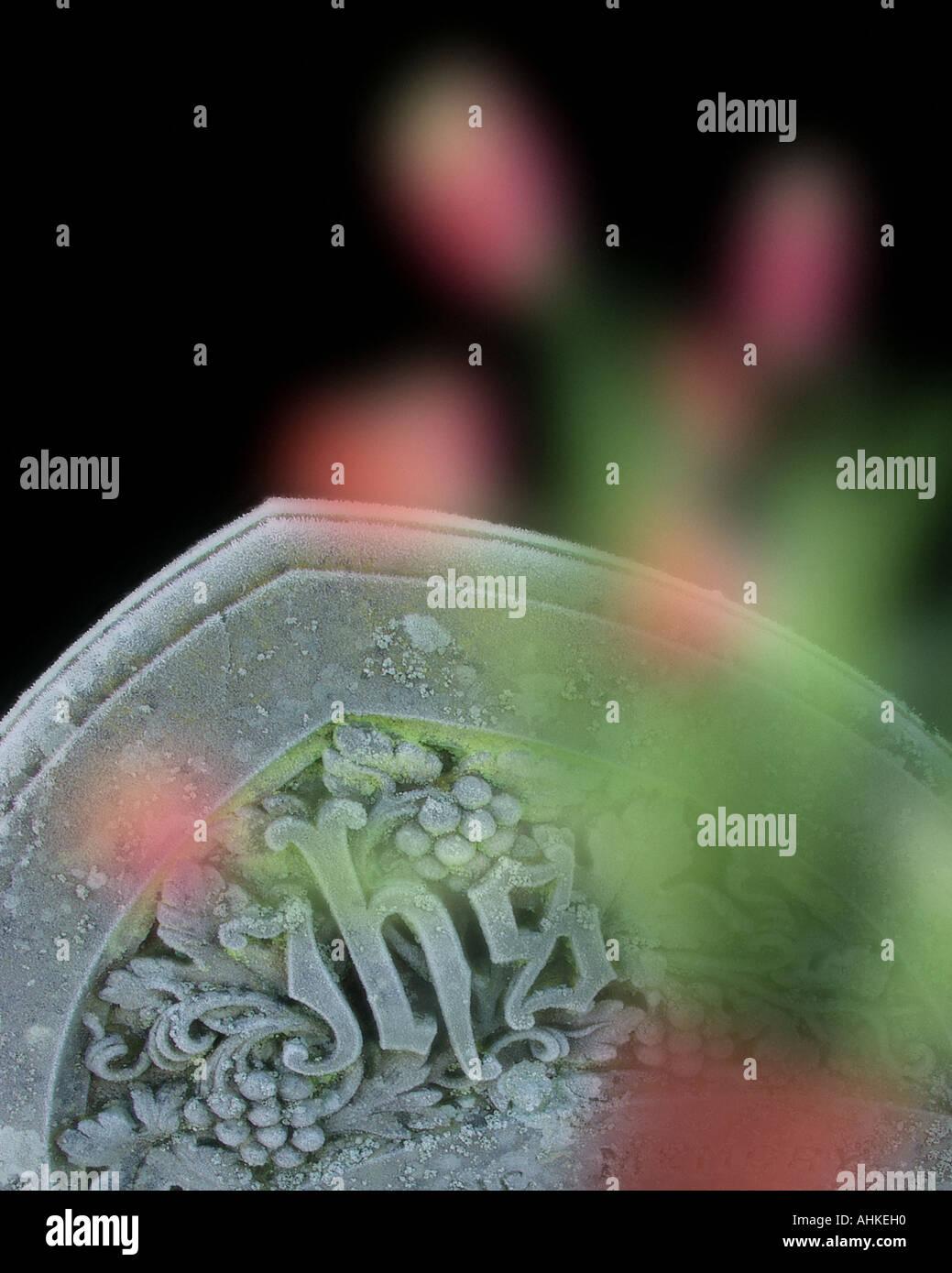 Concepto SYPMPATHY: Detalle de la antigua lápida en inglés Imagen De Stock