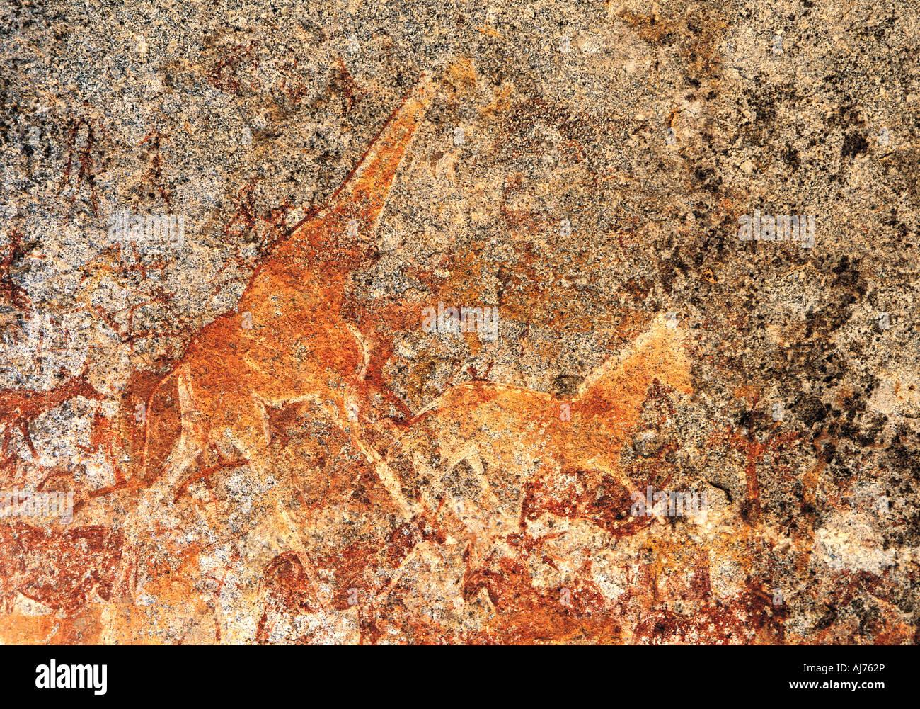 San Bushman Nswatugi o pinturas rupestres en el Parque Nacional de Matobo Zimbabwe Imagen De Stock
