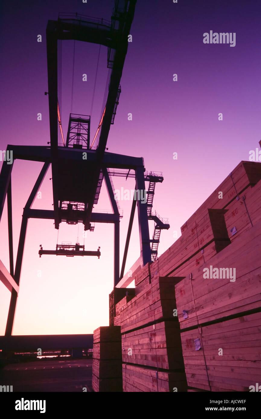 Grúa de contenedores utilizados para cargar cargueros Imagen De Stock