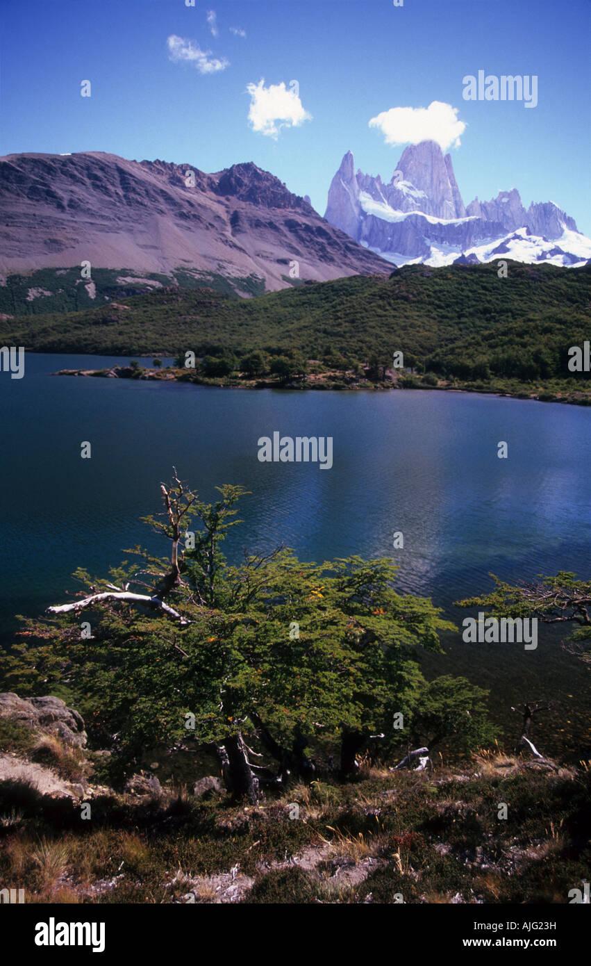 Mt Fitzroy, laguna Capri y hayedos meridionales, el Parque Nacional Los Glaciares, Patagonia, Argentina Foto de stock