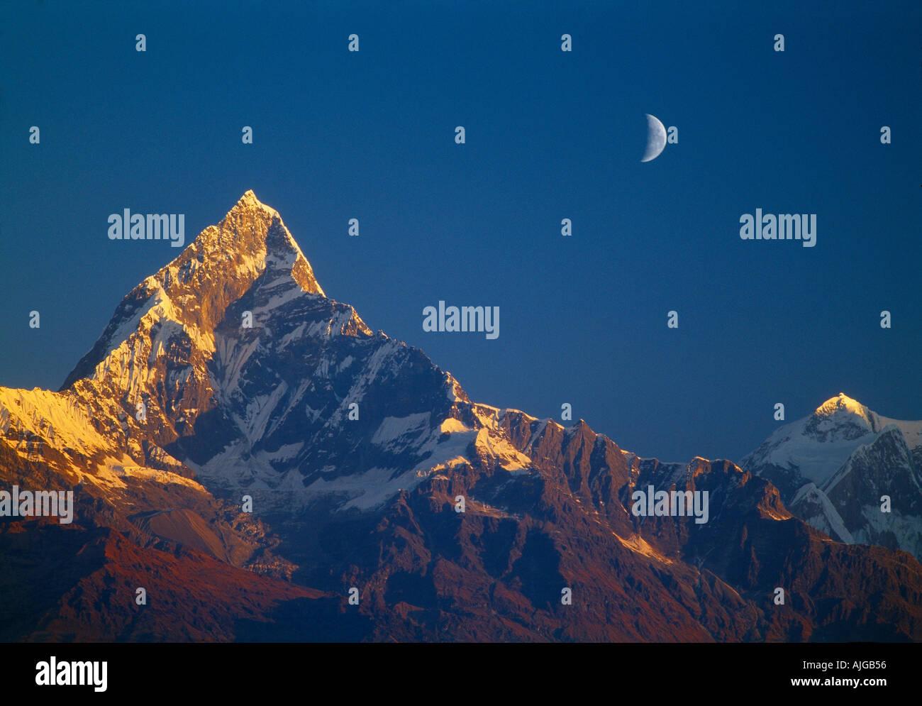 Fishtail Machhapuchhare montaña sagrada con la luna Annapurna Himalaya Nepal Foto de stock