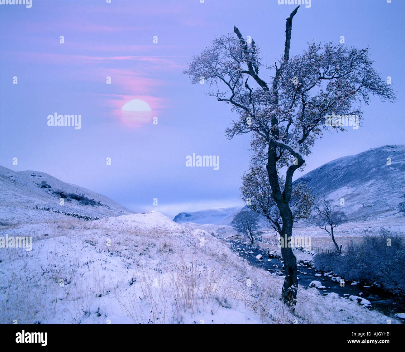 GB - Escocia: Invierno en Glen Lochsie en Tayside Imagen De Stock