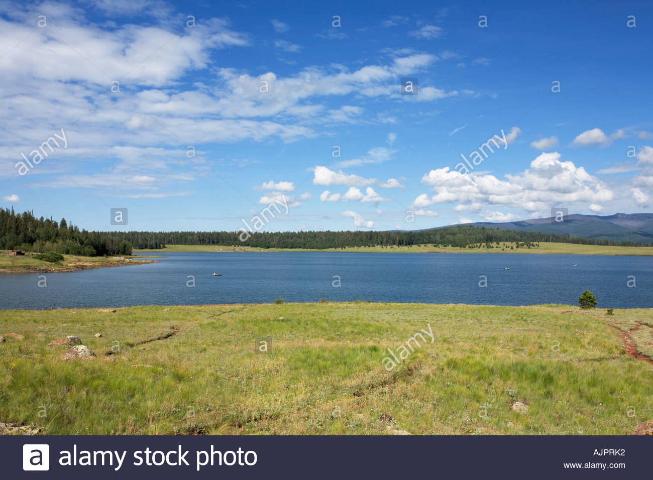 Gran Lago Apache National Forest, Arizona Foto de stock