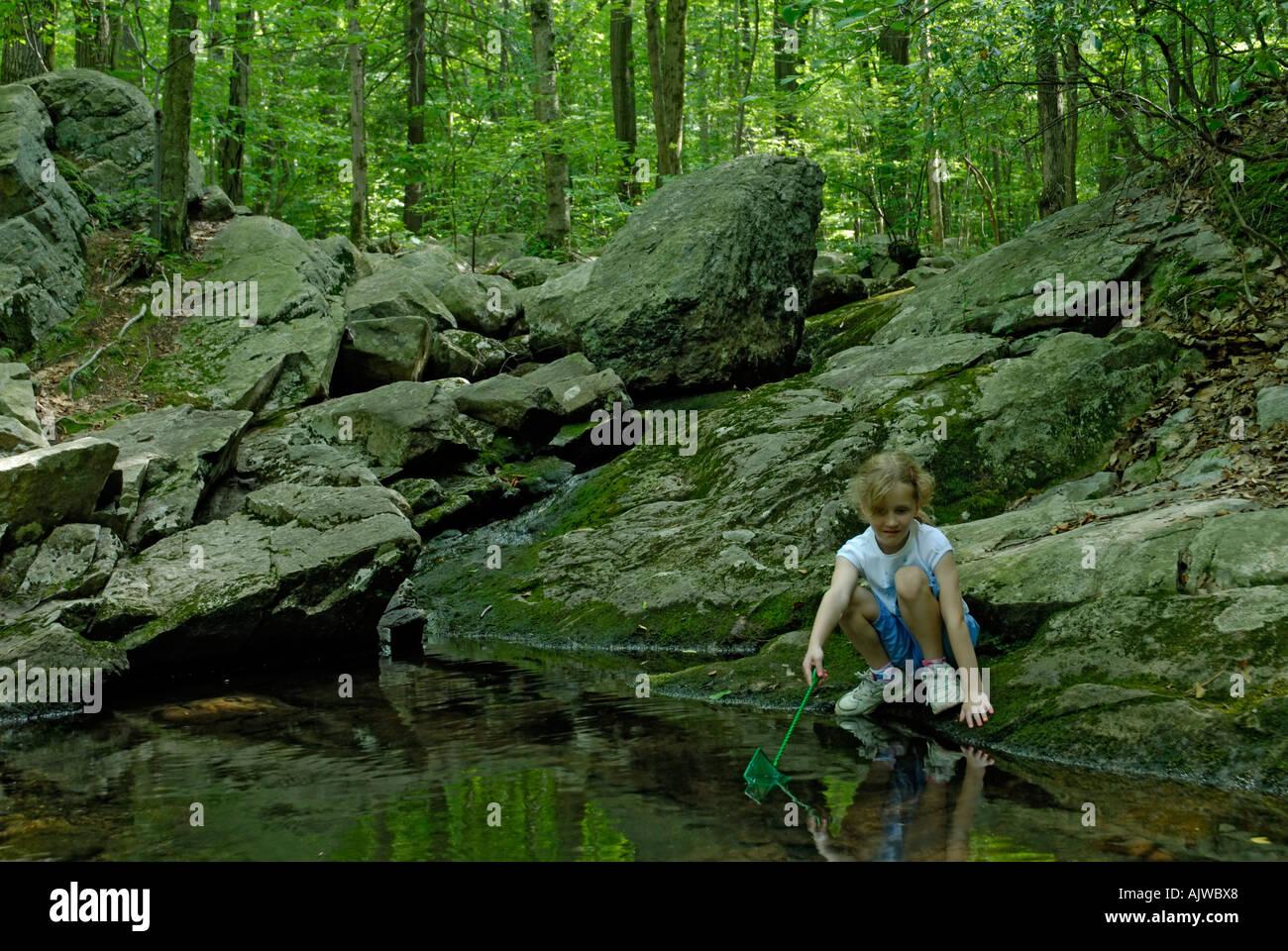 Muchacha con net busca atrapar ranas o peces en un arroyo en el bosque Imagen De Stock