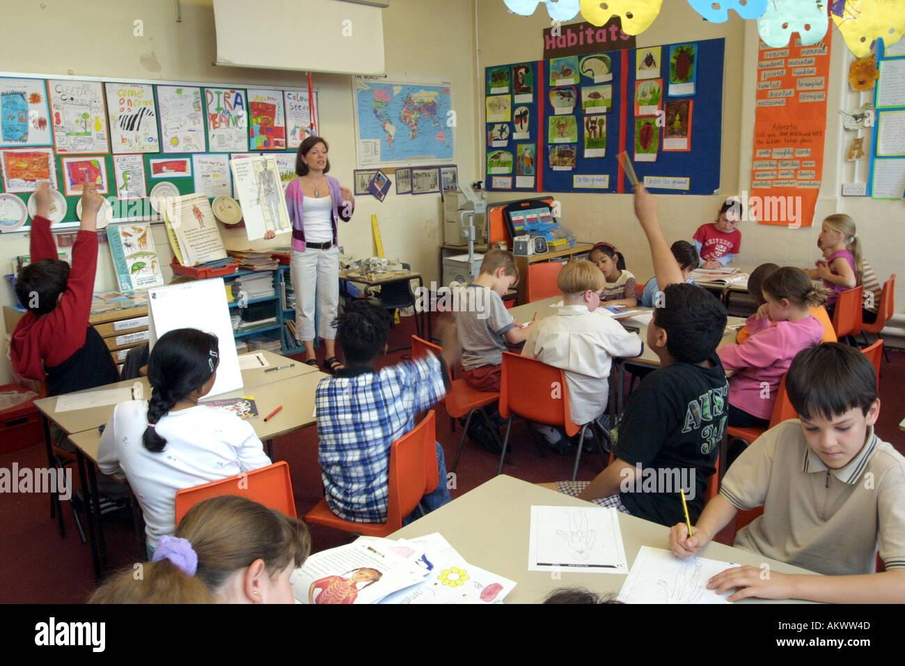 Lección de Anatomía del maestro que enseña a los niños de escuela ...