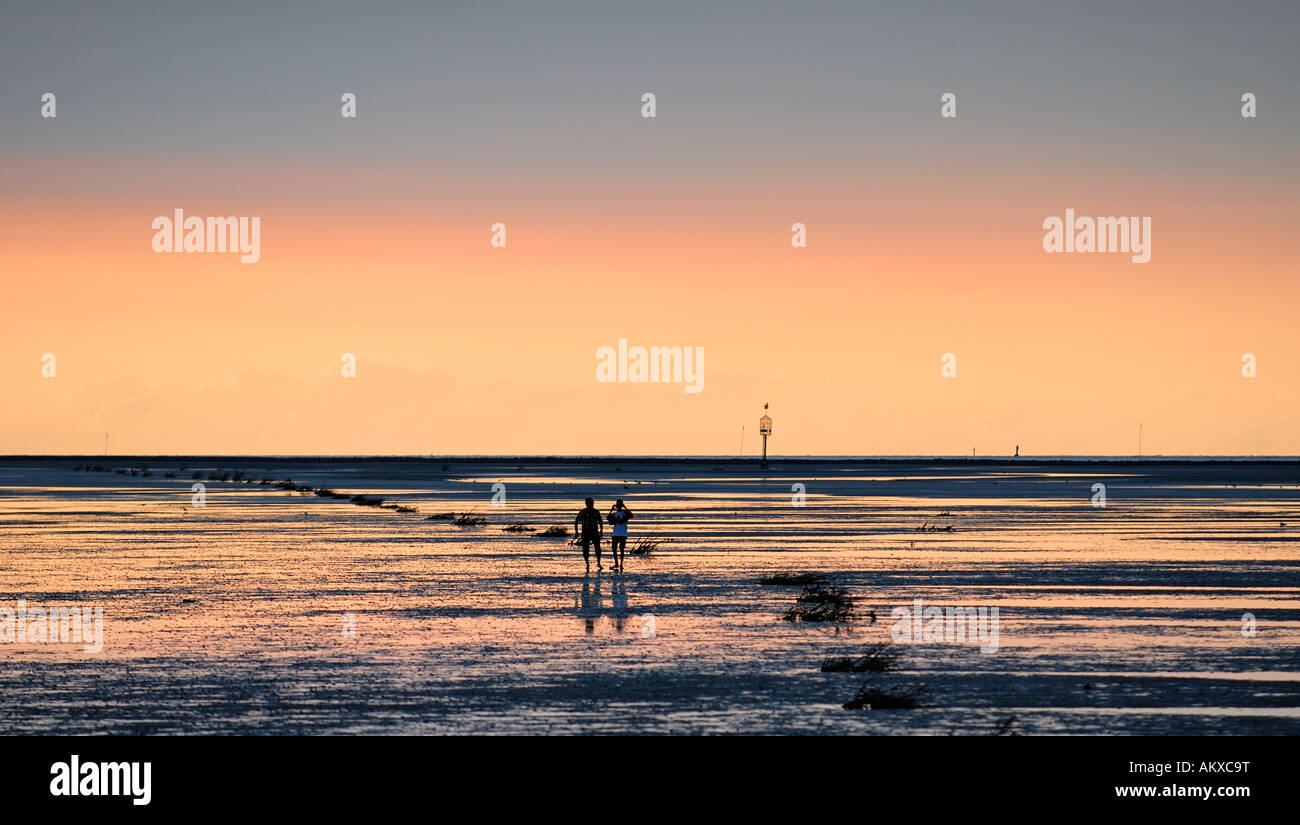 En Wadloper cerca del Mar de Wadden Cuxhaven-Duhnen Foto de stock