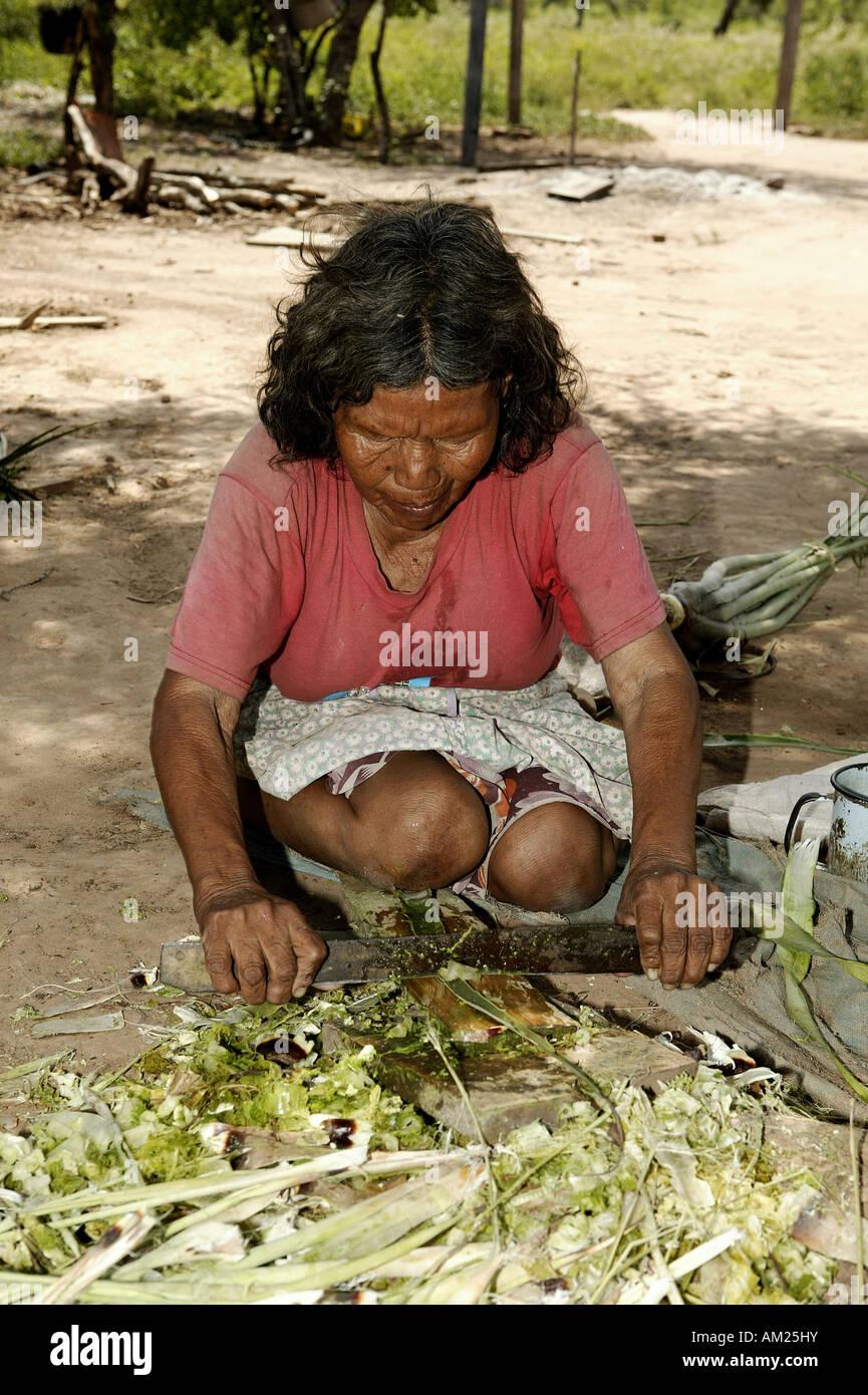 Ayoreo Mujer India Trabaja Con Fibras Bromelina Para Anudar Las