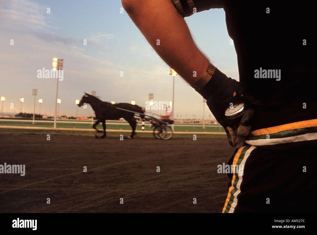 Tiempos de entrenador de un caballo de carreras de trote en la pista con un cronómetro Imagen De Stock