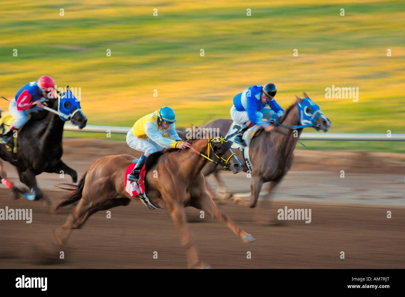 Carreras de caballos cuarto de milla anual celebrada en la milla ...