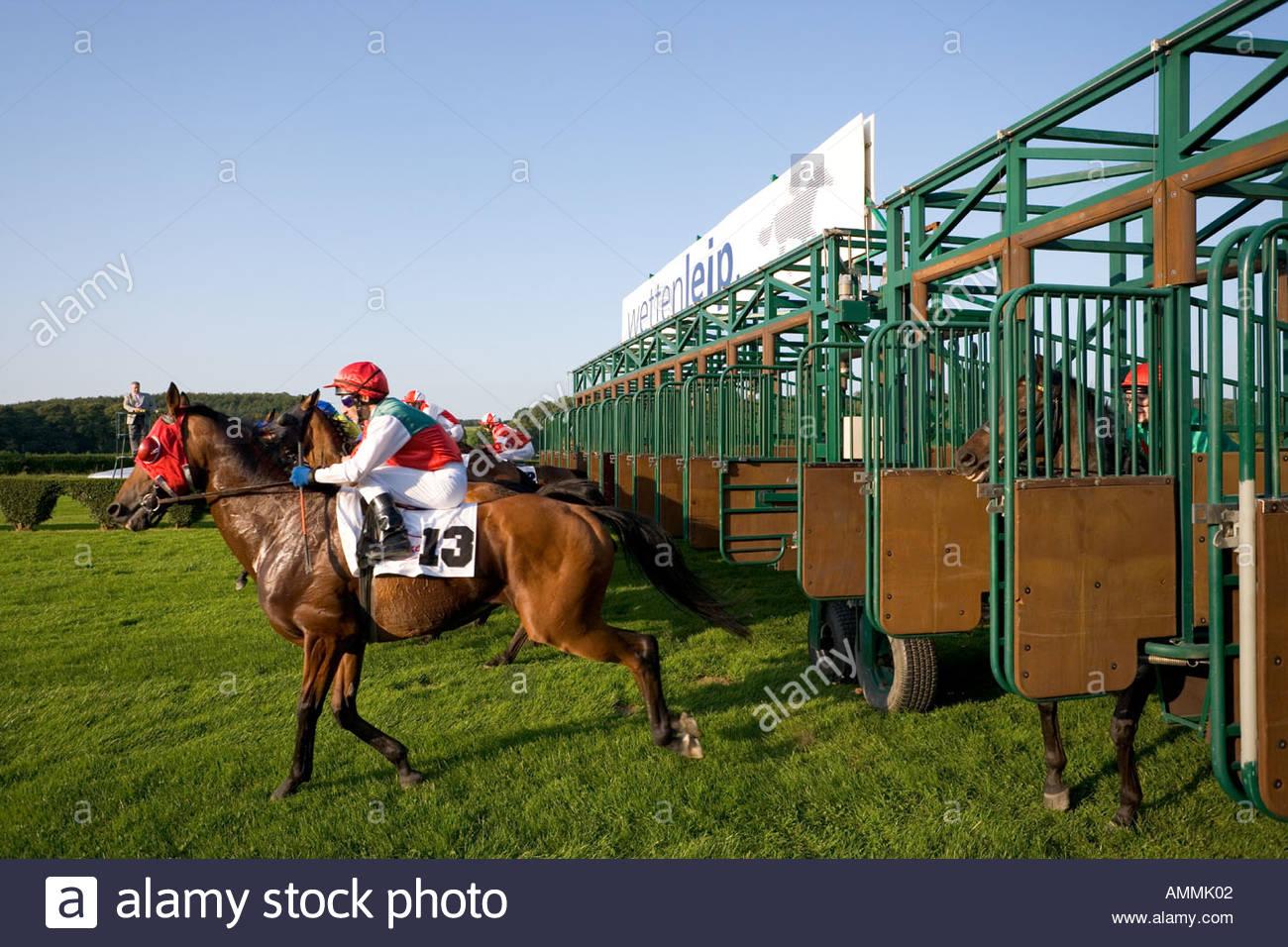 Las carreras de caballos del hipódromo hipódromo INICIO CARRERA CAJA DE ARRANQUE DE MÁQUINA jockey favorito de seda de colores estables galope césped de hierba de velocidad Imagen De Stock