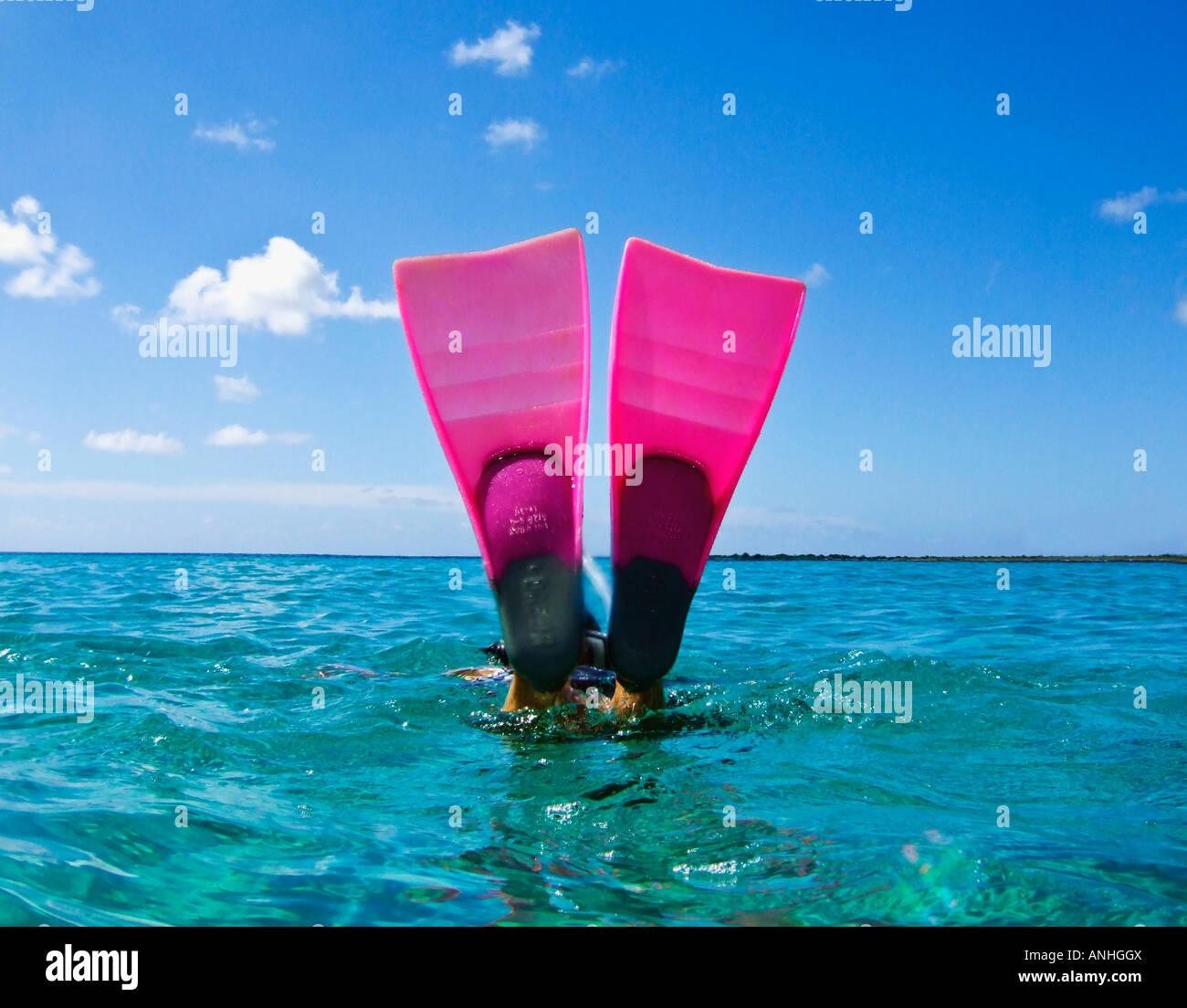 Rosa aletas buceo submarinismo en cian azul mar Caribe Imagen De Stock