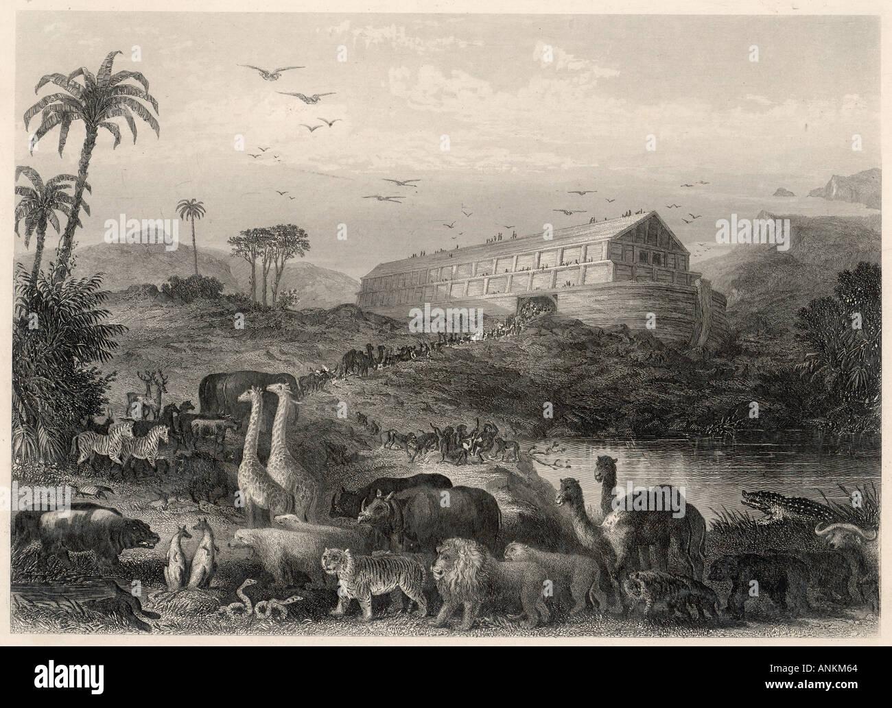 Los animales entran en el Arca Imagen De Stock