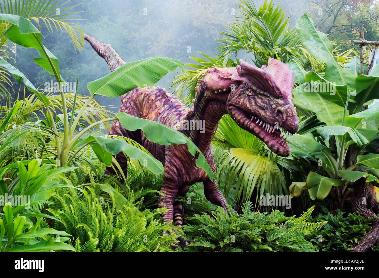 Lo que significa doble Dilophosaurus crested reptil dinosaurio del Jurásico Temprano, va a una longitud de 20 pies y w Imagen De Stock