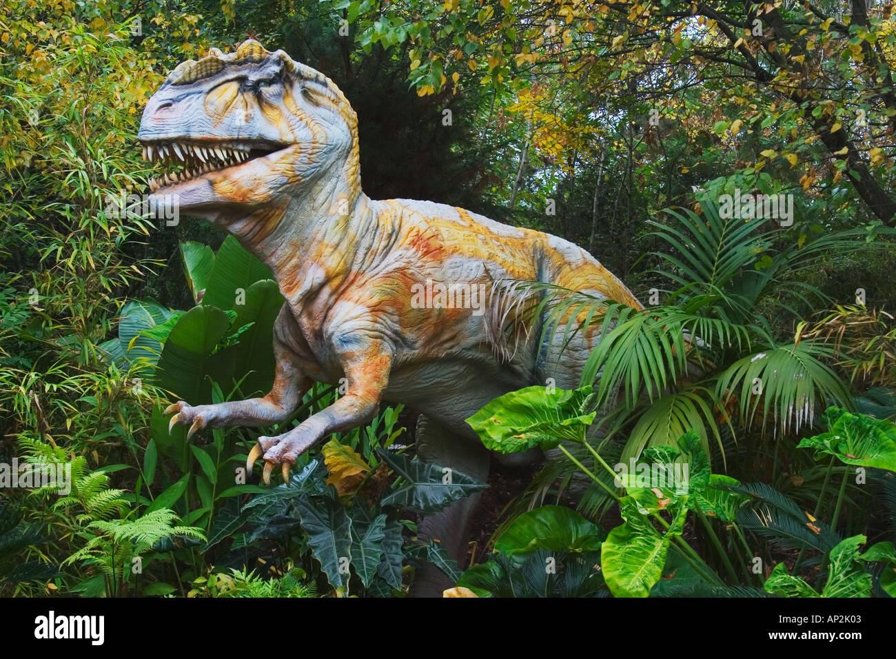 Allosaurus del Jurásico Growes hasta una longitud de hasta 39 pies y ponderado de hasta 2 toneladas, fue un devorador de carne pertenecía Imagen De Stock